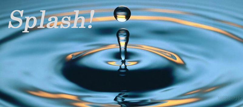 Splash! The Bainbridge Island Senior Center Newsletter